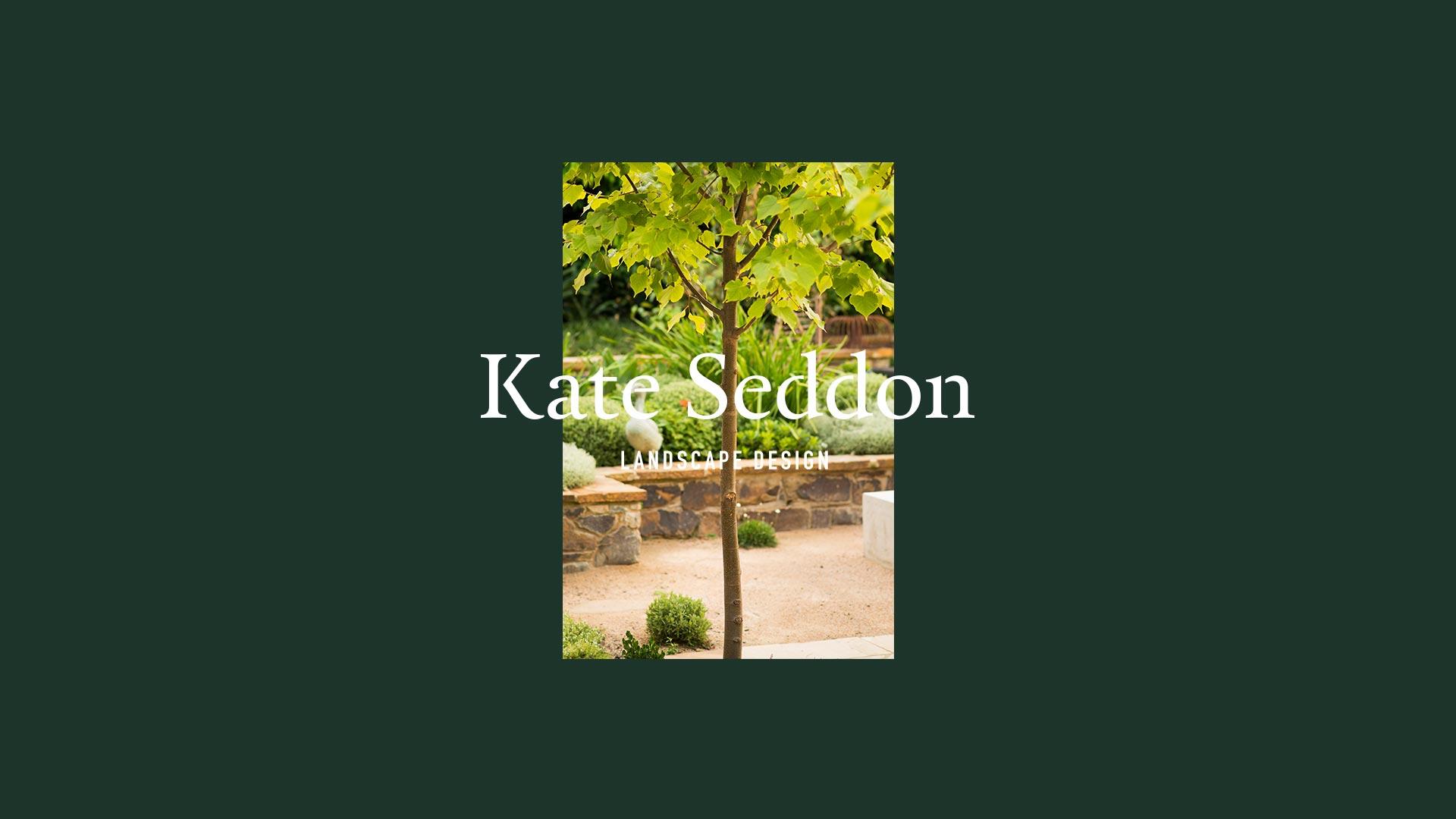 home – courtyard plain tree